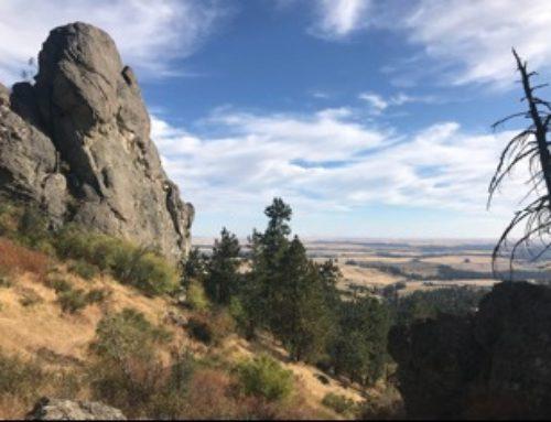 5 local hikes near Spokane